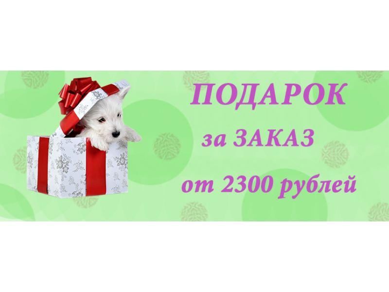 Акция!!! При заказе на сумму 2300 руб и выше - ПОДАРОК!!!  - Фото