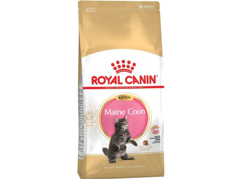 Royal Canin Сухой корм для котят породы МЕЙН-КУН в возрасте от 4 до 15 мес. (Kitten Мaine Coon) - Фото