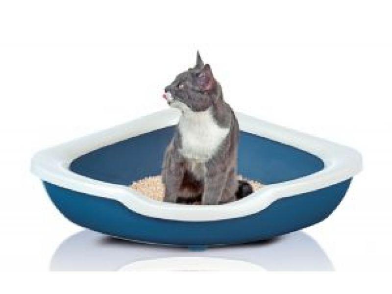 Сухой корм Наша марка с мясом ЦЫПЛЕНКА и РИСОМ для ПОЖИЛЫХ кошек - Фото