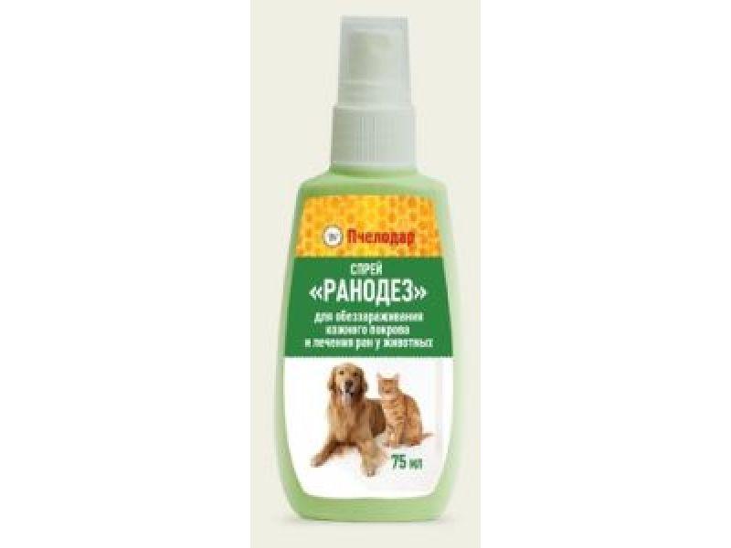 Лечение гнойных ран у собаки в домашних условиях - Etk-Krd.Ru