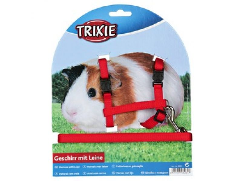 Trixie Шлейка с поводком для морских свинок (6261), 21-35 см/10 мм/1,25 м   - Фото