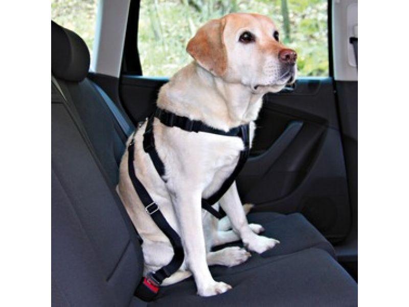 Trixie А\м ремень безопасности для собак (1292), 70-90см (L)  - Фото