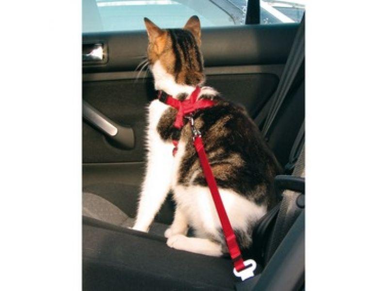 Trixie А\м ремень безопасности для кошки (1294), 20-50см - Фото