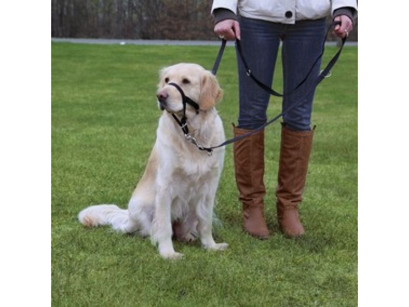 Trixie Намордник тренировочный для собаки (13006), 46 см (XL)  - Фото