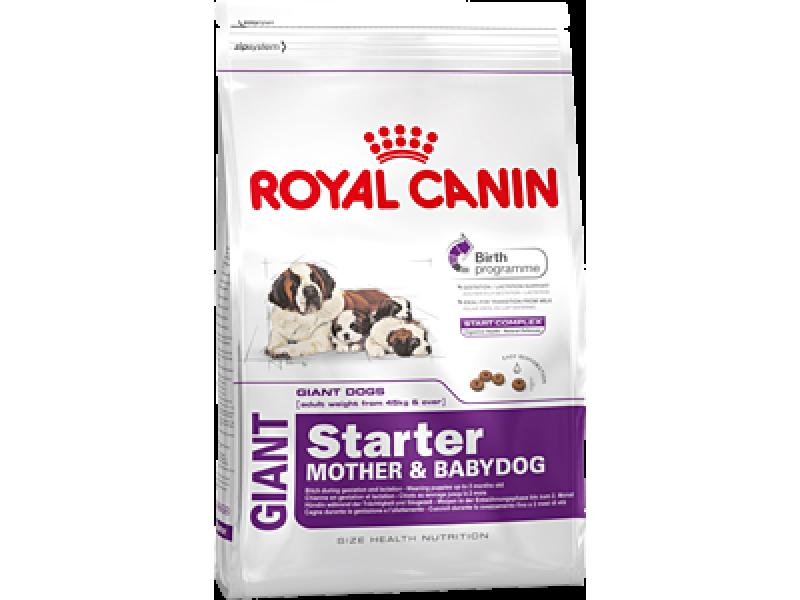 Сухой корм royal canin