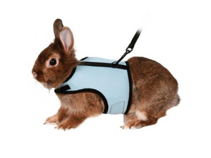 Trixie Шлейка-жилетка с поводком для кролика (61513), 25-32 см/1,2 м   - Фото