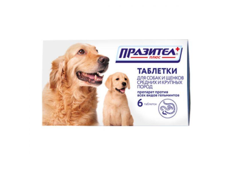 Астрафарм Празител Плюс Таблетки от глистов для Собак и Щенков средних и крупных пород, 6 шт.  - Фото