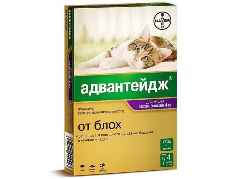 Bayer Адвантейдж Капли от блох, вшей и власоедов для кошек весом от 4 кг, 4 пипетки  - Фото