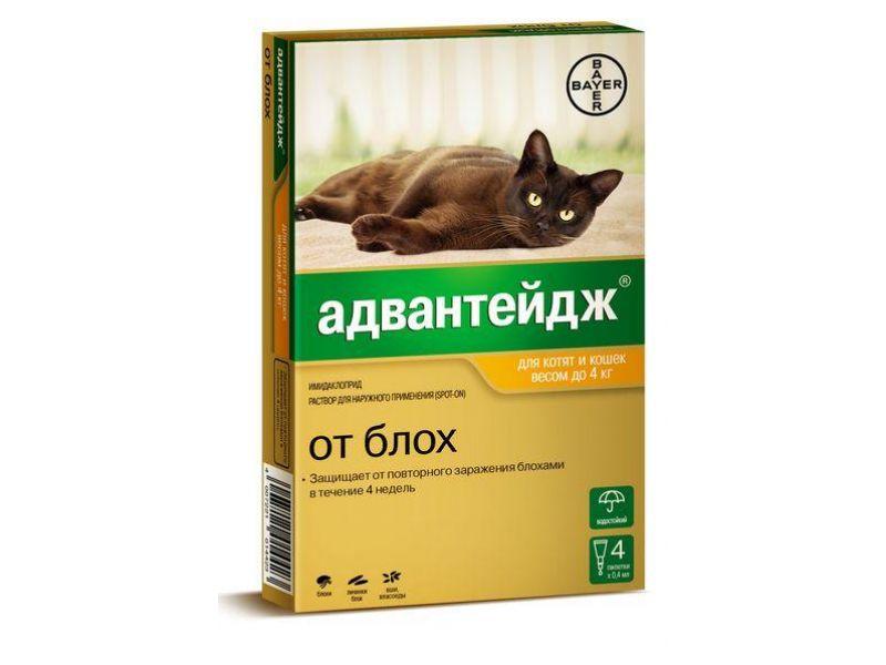 Bayer Адвантейдж Капли от блох, вшей и власоедов для кошек весом до 4 кг , 4 пипетки - Фото