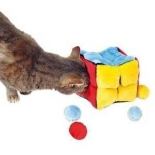 купить товары для кошек в санкт петербурге